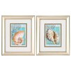 Propac Images Nautilus Turban 2 Piece Framed Graphic Art Set