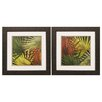 Propac Images New Organic 2 Piece Framed Graphic Art Set