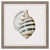 Propac Images Modern Shell with Teal I Framed Graphic Art