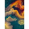 PTM Images Paradise Painting Print on Wrapped Canvas