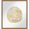 PTM Images Golden Sand Dollar Framed Painting Print