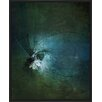 PTM Images 'Dragonflies II' Framed Painting Print