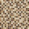 "Daltile Stone Radiance 0.63"" x 0.63"" Slate Mosaic Tile in Caramel Travertine"