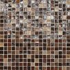"Daltile City Lights 1/2"" x 1/2"" Glass Mosaic Tile in Bangkok"