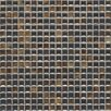 """Daltile Fashion Accents 0.63"""" x 0.63"""" Glass Mosaic Tile in Umber"""