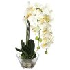 Nearly Natural Phalaenopsis Silk White Orchid in Glass Vase