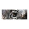 Sterling Industries Exclusive Gianni Rusconi Graphic Art on Canvas