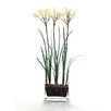 Distinctive Designs Waterlook Silk Nerine Lily Bulbs in Glass Vase