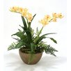 Distinctive Designs Silk Orchids with Fern Mix in Bowl