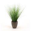 Distinctive Designs Silk Two-Tone Grass in Pot (Set of 6)