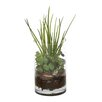 Distinctive Designs Waterlook® Grass and Succulents with Orchid Bark Desk Top in Pot