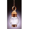 Northeast Lantern Onion 1 Light Outdoor Hanging Lantern