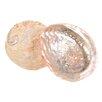 BIDKhome Decorative Perlmutt Shell (Set of 6)