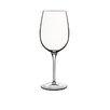 Luigi Bormioli Juicy Reds Wine Glass (Set of 2)
