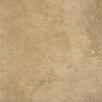 "Marazzi Stone Age 18"" x 18"" Porcelain Field Tile in Mammoth"