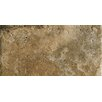 "Marazzi Archaeology 12"" x 24"" Porcelain Field Tile in Chaco Canyon"