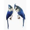 Tori Home Set of 2 Blue Jay Decorative Christmas Figure Ornaments 8""
