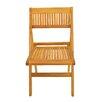 Anderson Teak Windsor Folding Dining Side Chair (Set of 2)