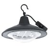 Eglo 12 Light Outdoor Pendant