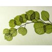 Moe's Home Collection Leaf Painting Print on Wrapped Canvas