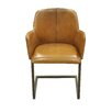 Moe's Home Collection Steve Leather Arm Chair