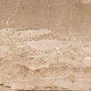 "Emser Tile Daino Reale 12"" x 12"" Marble Field Tile in White/Brown"