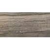 "Emser Tile Motion 19"" x 39"" Porcelain Wood Tile in Brown"