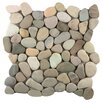 Emser Tile Venetian Random Sized Pebble Tile in Pastel