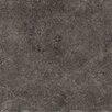 "Emser Tile Genoa Teramo 7"" x 7"" Porcelain Field Tile in Gray"