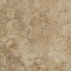 "Emser Tile Lucerne 7"" x 7"" Porcelain Field Tile in Beige"