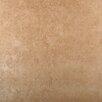 Emser Tile Baja 18 x 18 Ceramic Tile in Sonora