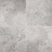 """Emser Tile Silver 16"""" x 32"""" Marble Tile in Silver Polished"""