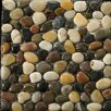 Emser Tile Natural Stone Random Sized Pebble Tile in 4 Color Blend