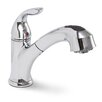 Premier Faucet Waterfront Single Handle Single Hole Kitchen Faucet with Pull-Out Spray