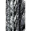 WallPops! Birch Wood Wall Mural