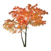 WallPops! Home Decor Line Orange Tree Wall Decal