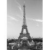 Brewster Home Fashions Ideal Décor La Tour Eiffel Wall Mural
