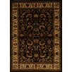 Home Dynamix Royalty Brown Area Rug
