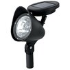 NorthernInternational LED Flood Light