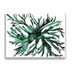 "Wildon Home ® ""Staghorn Fern"" by Kate Roebuck Painting Print on Canvas"