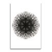 Wildon Home ® Sacred Geometry II by Javier Gomez Graphic Art on Wrapped Canvas