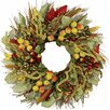 Wildon Home ® Frosted Apple Wreath