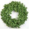 Wildon Home ® Alpine Wreath
