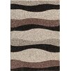 Wildon Home ® Caylee  Brown Area Rug