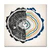 Wildon Home ® Dissection Graphic Art on Wrapped Canvas