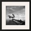 Wildon Home ® 'Water Tree' by Moises Levy Framed Photographic Print