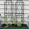 Contemporary Steel Gothic Trellis Set - Wildon Home Trellises