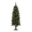 General Foam Plastics 4' Green Alpine Christmas Tree with 70 Clear Lights