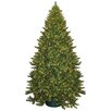 General Foam Plastics 9' Montana Green Artificial Christmas Tree with 950 Clear Lights