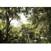 Komar Tapete Dschungel 250 cm L x 350 cm B